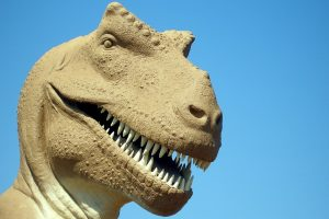 Have a Vision for Your Practice so You Don't Become Extinct